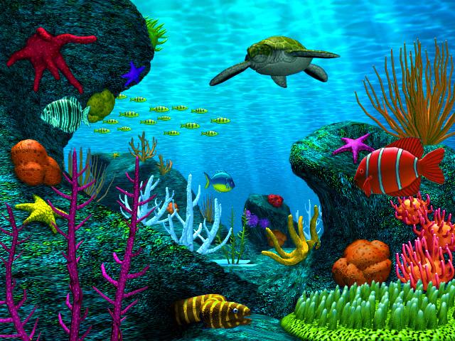bigblue-underwater