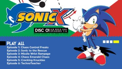 Photo of Sonic X seasons 1 and 2 is getting released on September 27th