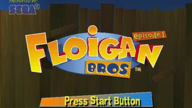 Photo of Floigan Bros. developers help release DLC