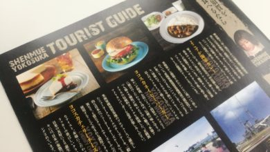 "Photo of SEGA and Yokosuka, Japan team up for a Shenmue ""Sacred Spot"" guide book"