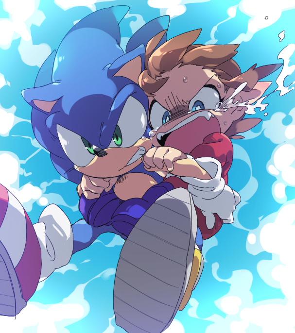 Sonic and Alex Kidd by Hōmei